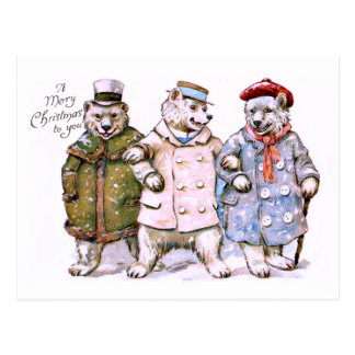 Three Charming Polar Bears Postcard