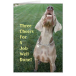 Three Cheers For A Job Well Done! Greeting Card