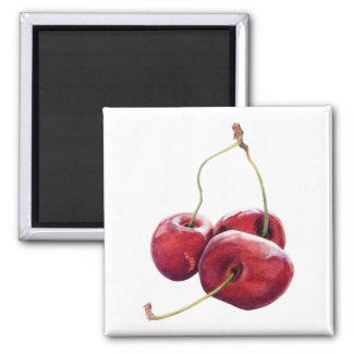 Three Cherries Magnet