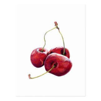 Three Cherries Postcard