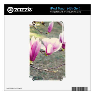 Three Cherry Blossoms Decals For iPod Touch 4G