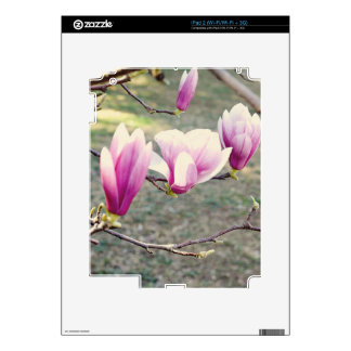 Three Cherry Blossoms Decals For The iPad 2