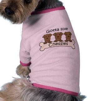 Three Chesapeake Bay Retrievers Pet Clothes