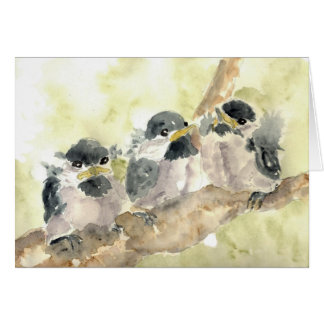 Three Chick-a-Dees Revisited - Watercolor Pencil Greeting Card