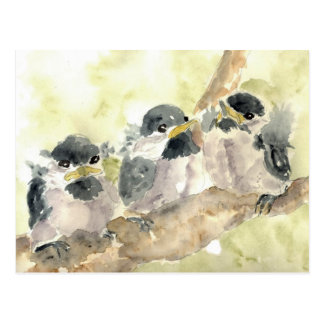 Three Chick-a-Dees Revisited - Watercolor Pencil Postcard