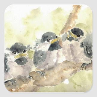 Three Chick-a-Dees Revisited - Watercolor Pencil Square Sticker