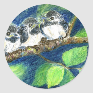 Three Chick-a-Dees - Watercolor Pencil Classic Round Sticker