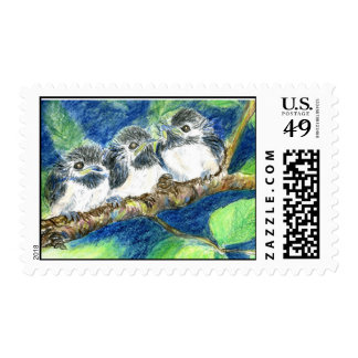 Three Chick-a-Dees - Watercolor Pencil Stamps