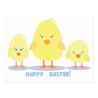 Three Chicks Postcard