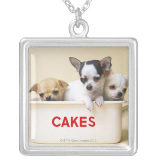 Three chihuahua puppies in cake tin personalized necklace