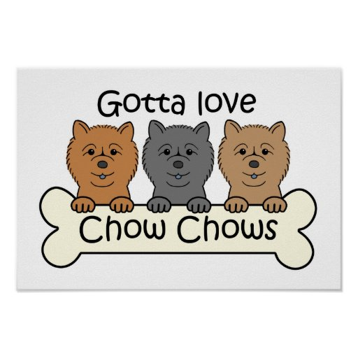 Three Chow Chows Posters
