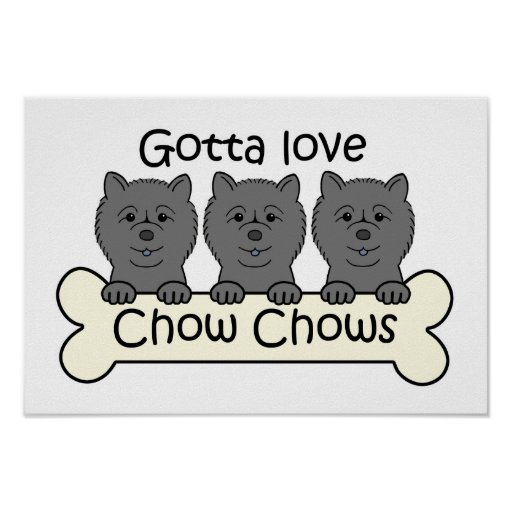 Three Chow Chows Poster