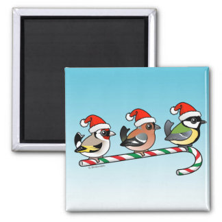 Three Christmas Finches (EU) 2 Inch Square Magnet