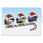 Three Christmas Songbirds (US) Greeting Cards