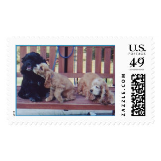 Three Cocker Spaniels Postage Stamp