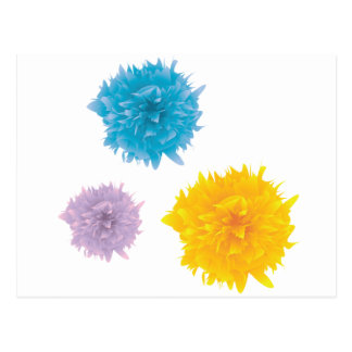 Three Colorful Blooms Postcard
