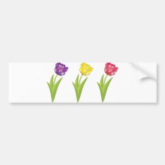 Three colorful tulips bumper sticker