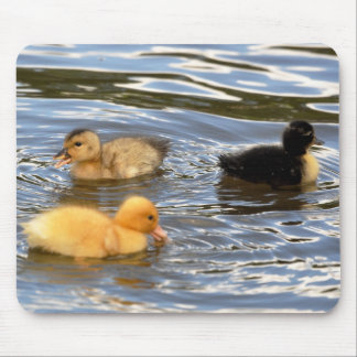 Three coloured ducklings Mousemat Mouse Pad