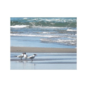 Three Common Terns Watercolor Wrapped Canvas