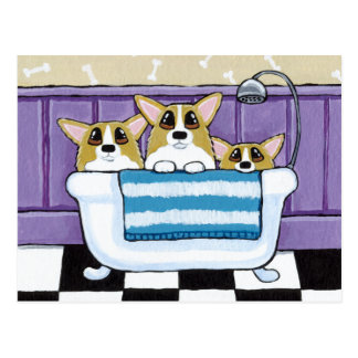 Three Corgis in the Bathtub Postcard