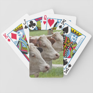 Three Cows in a Row Playing Cards