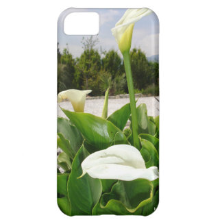 Three Cream Calla Lilies With Garden Background iPhone 5C Case