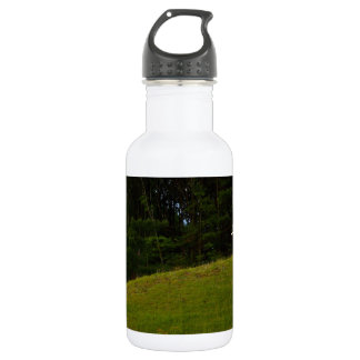 THREE CROSSES ON A HILL STAINLESS STEEL WATER BOTTLE