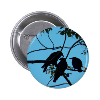 Three Crows In a Tree Pinback Button