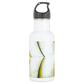Three Curves over the Green River (New Japonisme) Stainless Steel Water Bottle