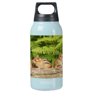 Three Cute Baby Chipmunks Insulated Water Bottle