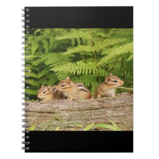 Three Cute Baby Chipmunks Spiral Notebook