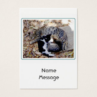 Three Cute Cats Curled Up Asleep Business Card