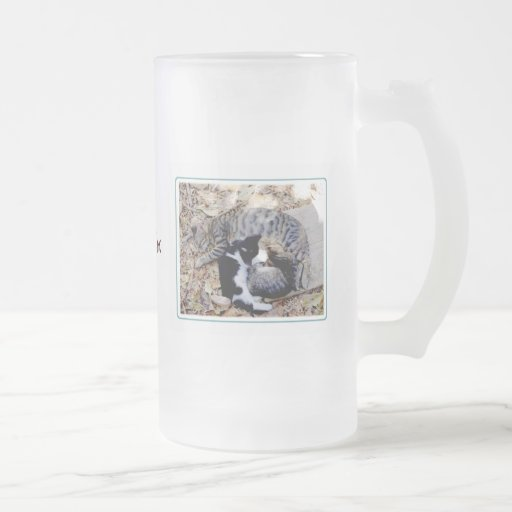 Three Cute Cats Curled Up Asleep Frosted Glass Beer Mug