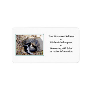 Three Cute Cats Curled Up Asleep Label at Zazzle