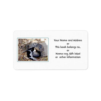 Three Cute Cats Curled Up Asleep Address Label