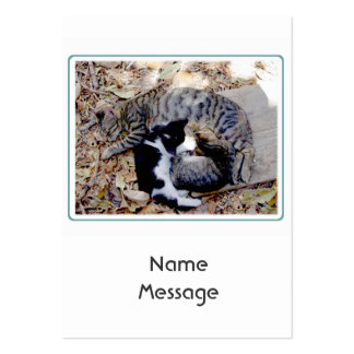 Three Cute Cats Curled Up Asleep Large Business Cards (Pack Of 100)