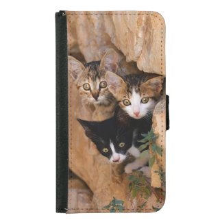 Three cute curious kittens wallet phone case for samsung galaxy s5