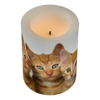 Three Cute Ginger Kittens Side by Side, Wrapped Flameless Candle