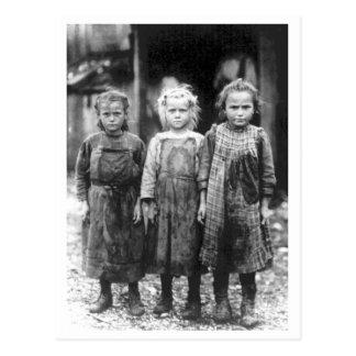 Three Cute Little Girls Vintage South Carolina Postcard