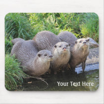 Three Cute Otters Wildlife Photography Mouse Pad