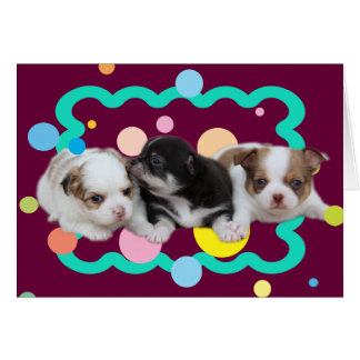 Three Cute Puppies (dogs) Card