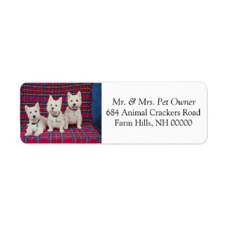 Three Cute Puppies Return Address Mail Stickers