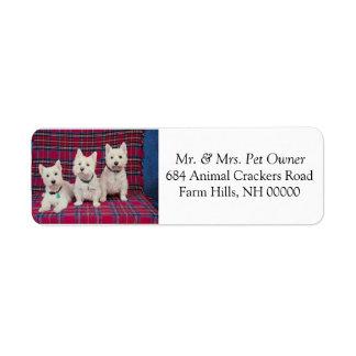 Three Cute Puppies Return Address Mail Stickers Return Address Label