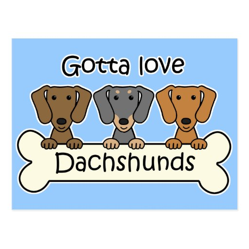 Three Dachshunds Postcard