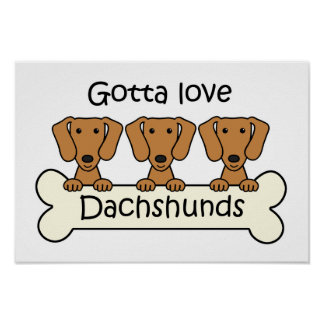 Three Dachshunds Poster