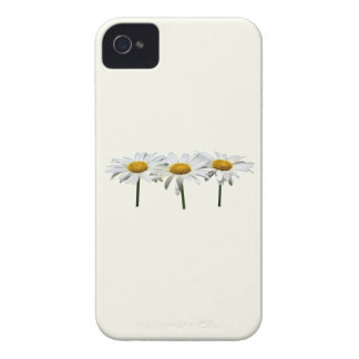 Three Daisies In a Row iPhone 4 Cover