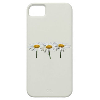 Three Daisies In a Row iPhone SE/5/5s Case
