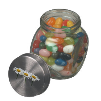 Three Daisies In a Row Jelly Belly Candy Jars