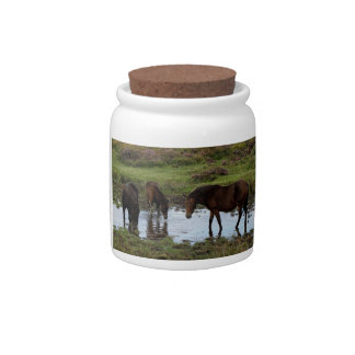 Three Dartmoor Ponies Drinking At Watering Hole Candy Dish