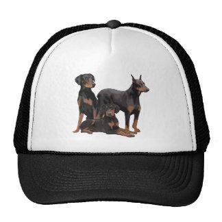 three doberman dogs trucker hat